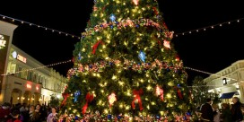 31st Annual Mayor & Council Christmas Tree Lighting