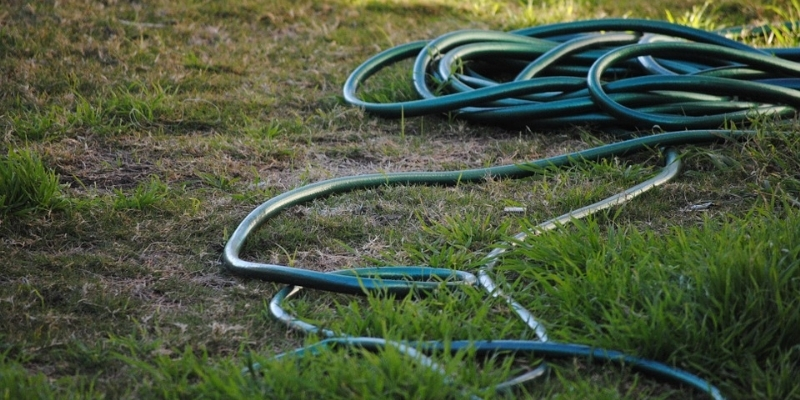 Conserve water, only water lawns when necessary, and less frequently.