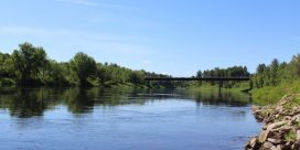 Miramichi Fishing Report Week of August 4, 2016