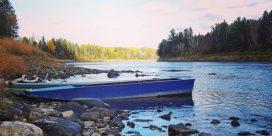 Miramichi Fishing Report for Week of October 27, 2016