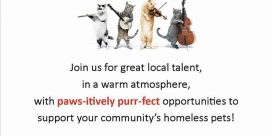 """Come Together"" at AJ's Lounge & Restaurant for Saint John SPCA Animal Rescue"