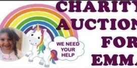 Charity Auction for Emma Leavitt