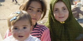Helpline for NBers looking to Welcome Refugees