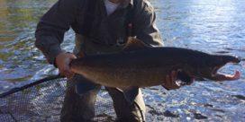 Miramichi Fishing Report October 7, 2016
