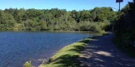 Join us for the opening of two new trails in Rockwood Park